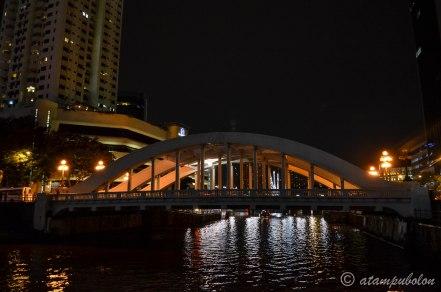 Singapore at night (3)