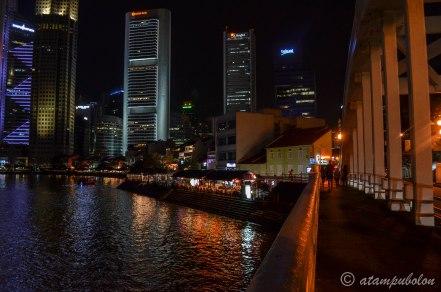 Singapore at night (4)